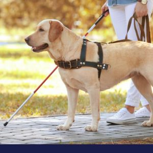 canine careers in canada