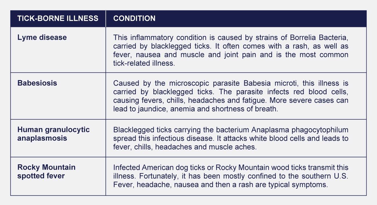 infographic table of tick borne illnesses