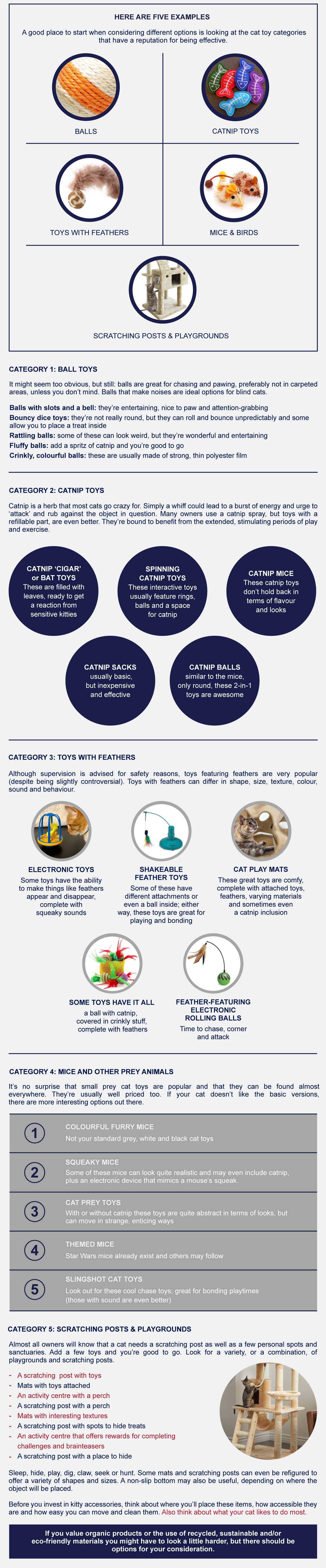 infographic interactive cat toys