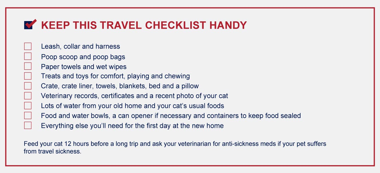 Travel checklist for cat owners