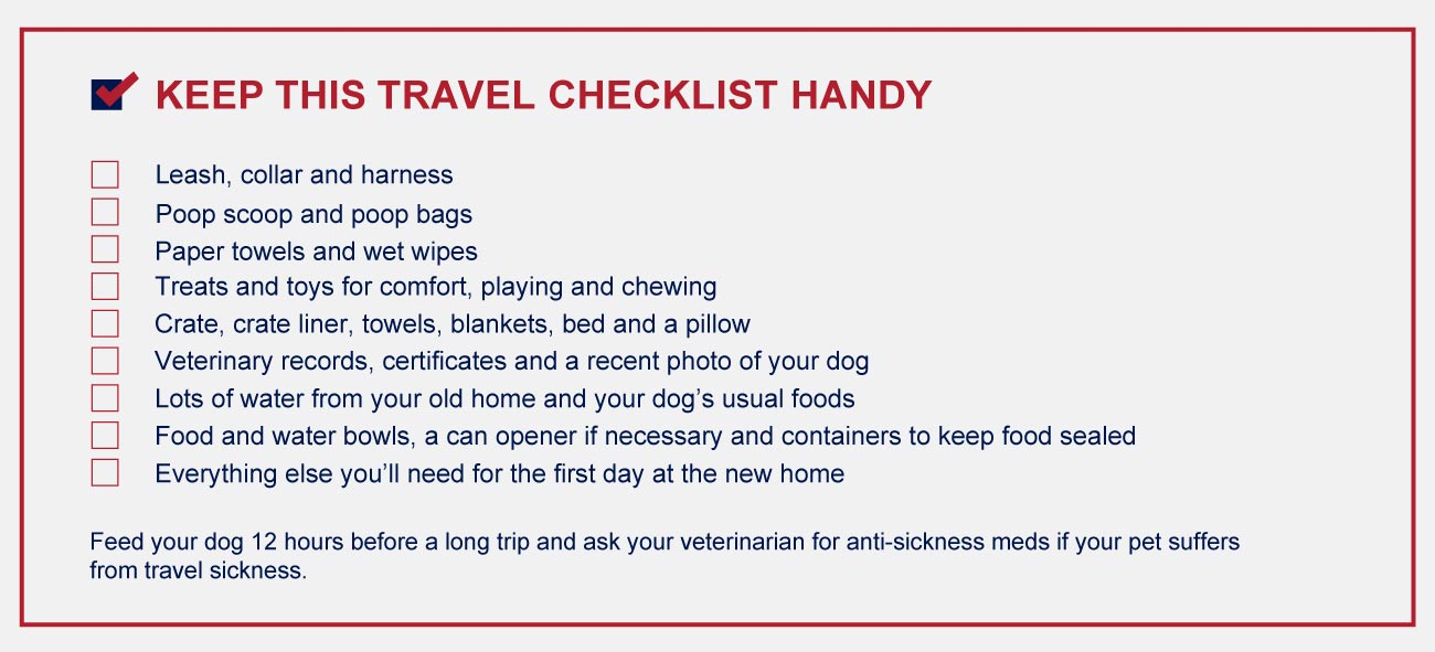 Travel checklist for dog owners