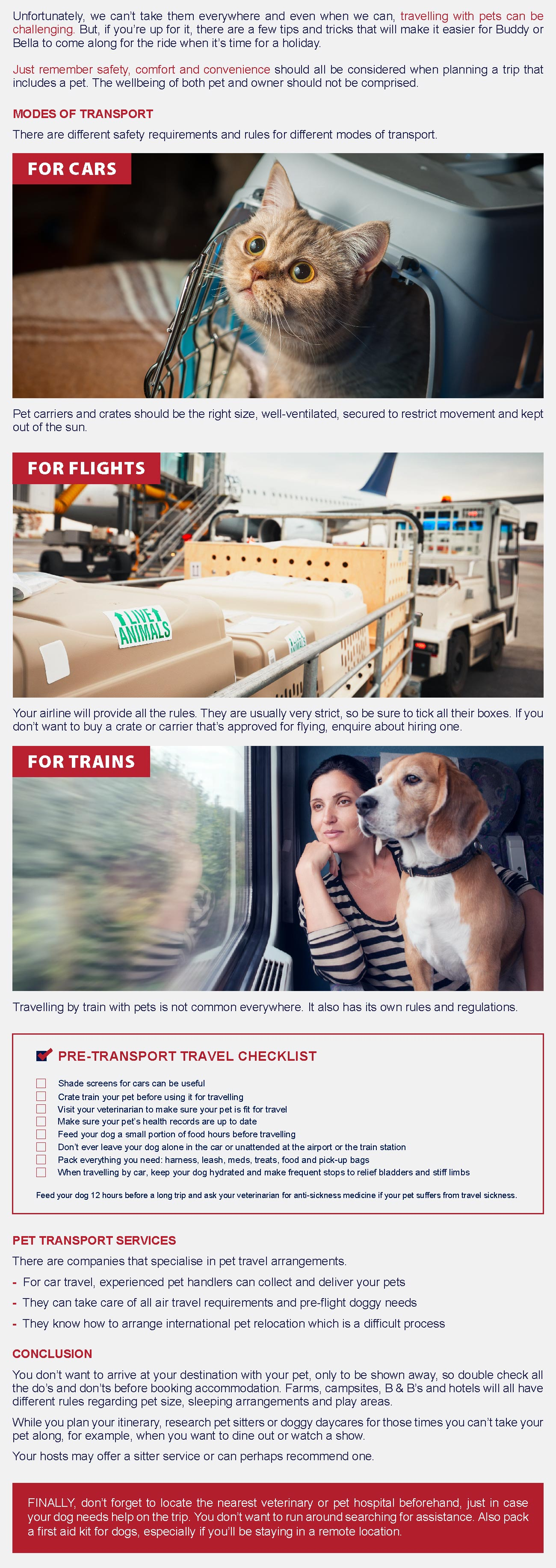 infographic- how to tackle pet transport