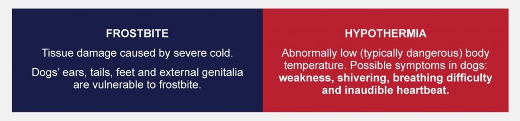 difference between frostbite and hypothermia